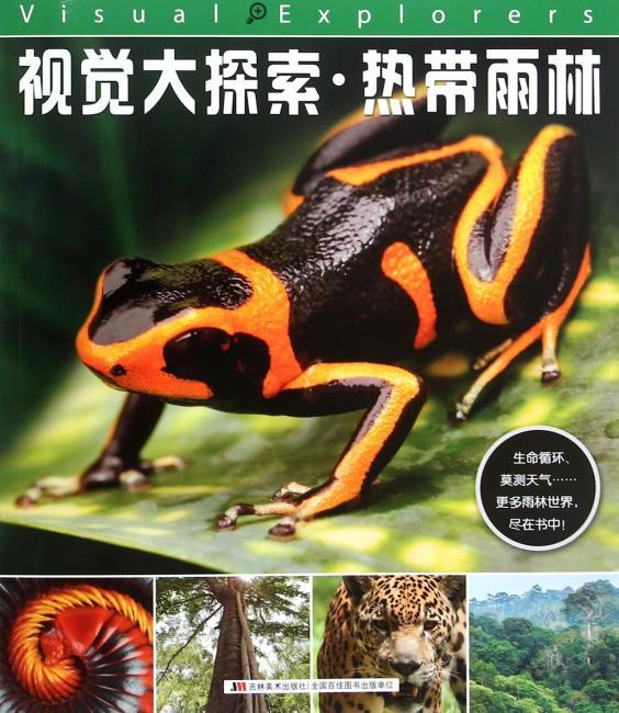 视觉大探索——热带雨林