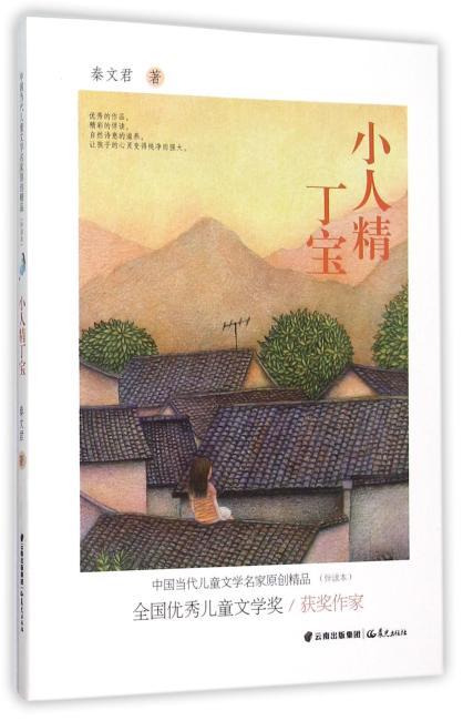 中国当代儿童文学名家原创精品伴读本--小人精丁宝