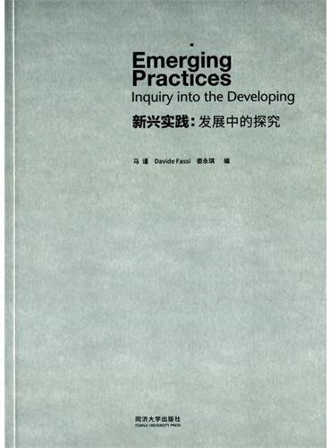 新兴实践:发展中的探究