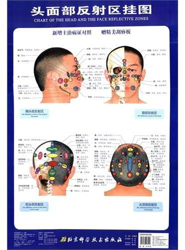 头面部反射区挂图(新增主治病证对照,赠精美刮痧板)