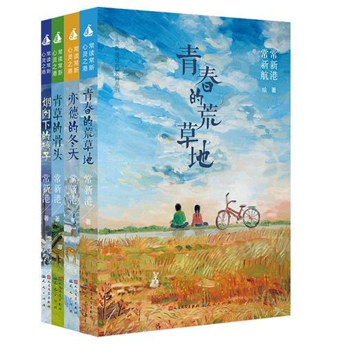 常新港经典长篇系列(共4册)