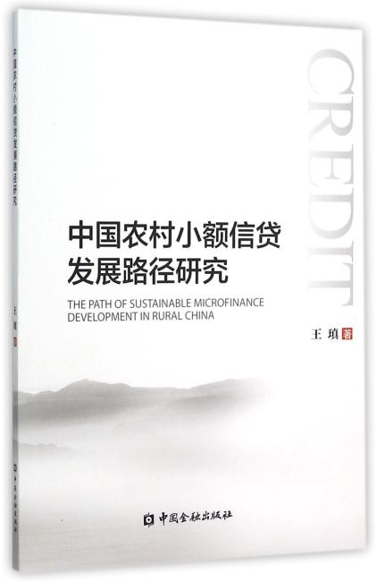 中国农村小额信贷发展路径研究