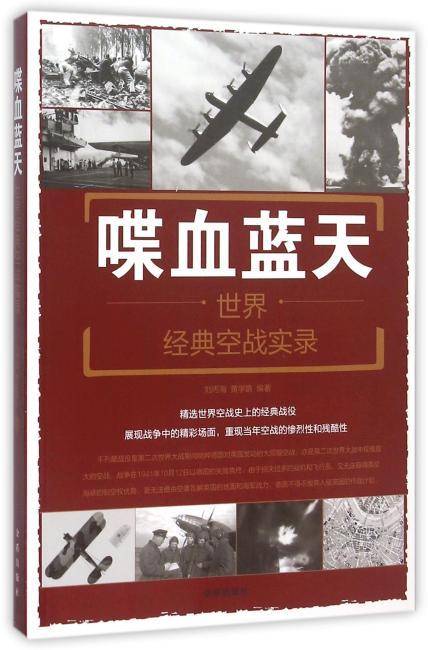 喋血蓝天·世界经典空战实录