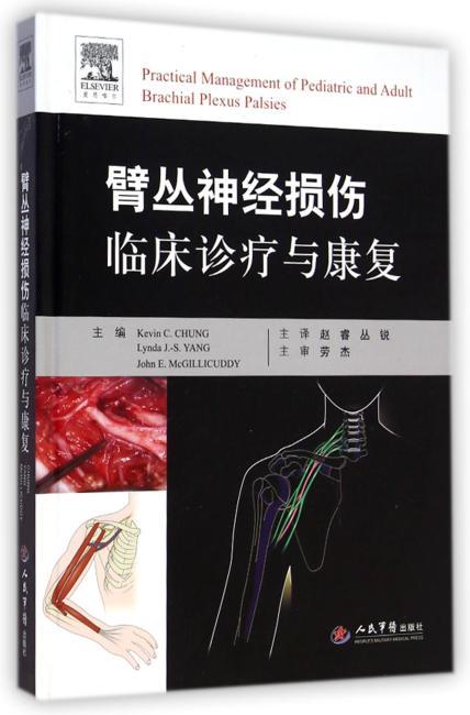 臂丛神经损伤临床诊疗与康复