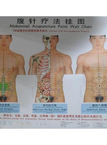 腹针疗法挂图(附说明书)
