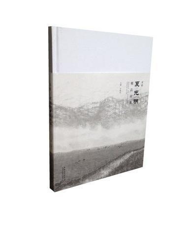 名家·夏光明精品画集