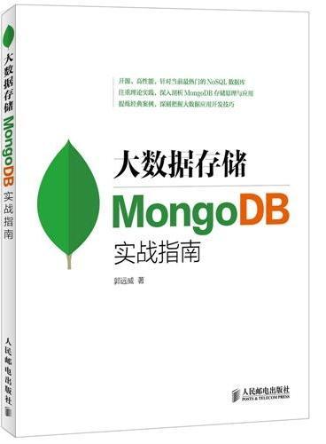 大数据存储 MongoDB实战指南
