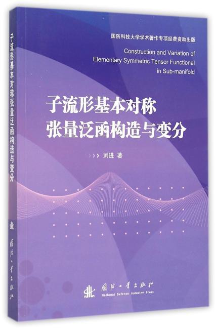 子流形基本对称张量泛函构造与变分
