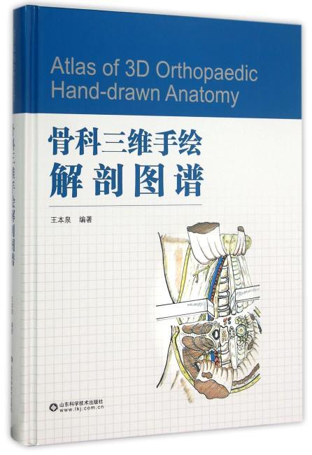 骨科三维手绘解剖图谱
