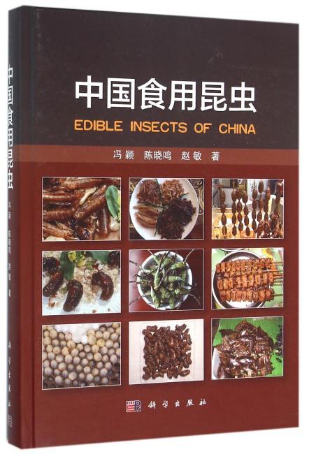 中国食用昆虫