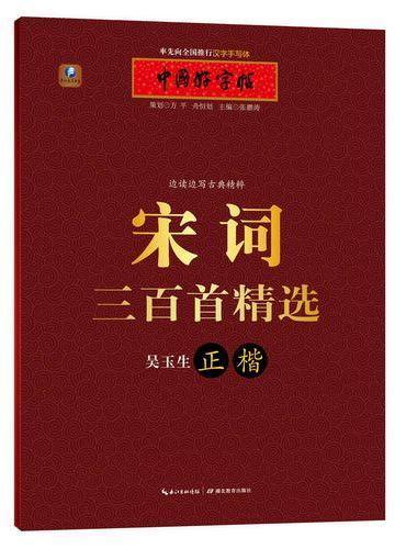 中国好字帖 边读边写古典精粹 宋词三百首(正楷)