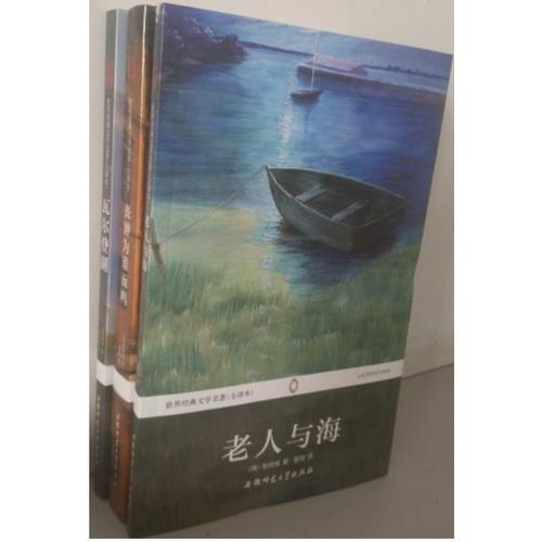 瓦尔登湖 老人与海  丧钟为谁而鸣世界经典文学名著(全译本)