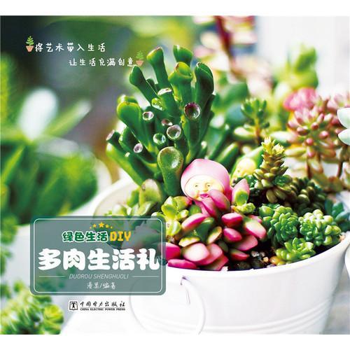 绿色生活DIY——多肉生活礼