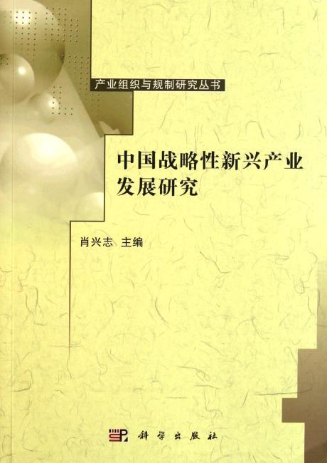 中国战略性新兴产业发展研究