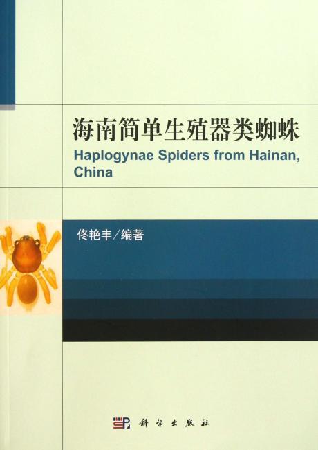 海南简单生殖器类蜘蛛