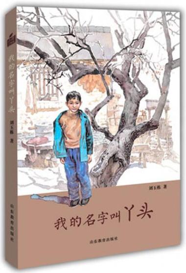 我的名字叫丫头(小荷工作坊原创儿童文学)刘玉栋长篇少年成长小说 精美插画儿童心灵成长培养阅读写作能力 学生课外读物儿童读物