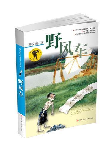 曹文轩纯美小说*野风车(新版)