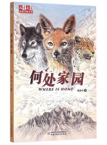 《儿童文学》金牌作家书系——何处家园