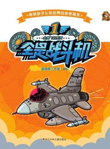 全是飞机系列  1全是战斗机