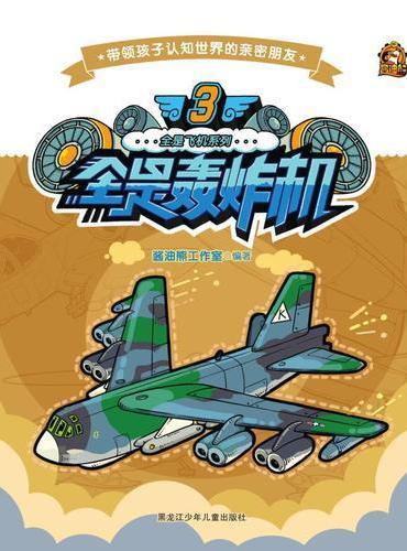 全是飞机系列  3全是轰炸机
