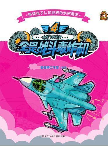 全是飞机系列  4全是战斗轰炸机