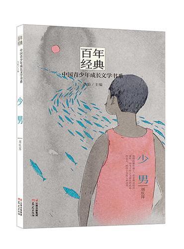 百年经典·中国青少年成长文学书系:少男