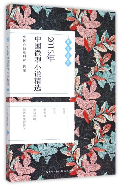 2015年中国微型小说精选