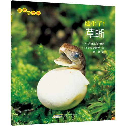生命的故事:诞生了!草蜥