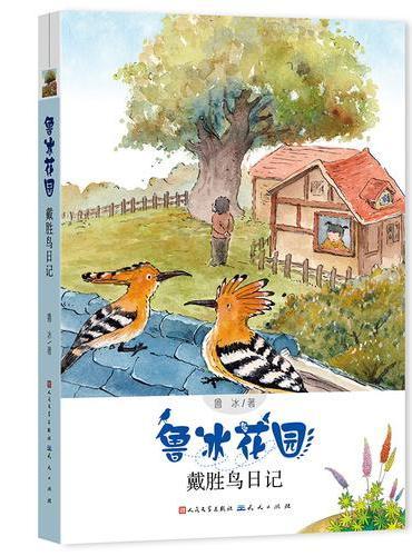 戴胜鸟日记(鲁冰花园)