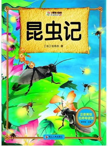 注音美绘名师导读馆——昆虫记
