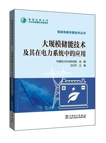 智能电网关键技术丛书 大规模储能技术及其在电力系统中的应用