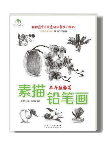 素描铅笔画· 花卉植物篇