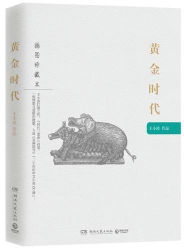 黄金时代:王小波作品(插图珍藏本)