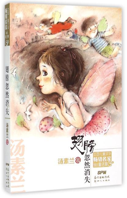 中国儿童文学畅销名家精品童话集 翅膀忽然消失