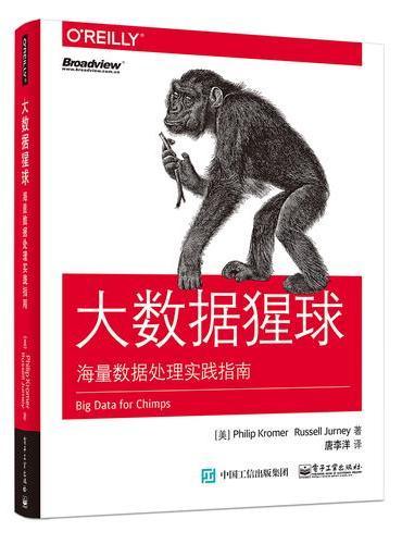 大数据猩球:海量数据处理实践指南