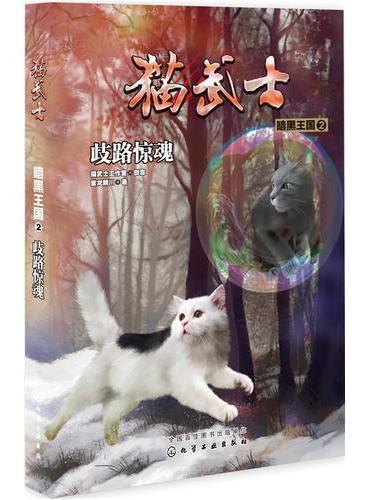 猫武士·暗黑王国2·歧路惊魂