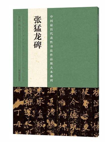中国最具代表性书法作品放大本系列  张猛龙碑