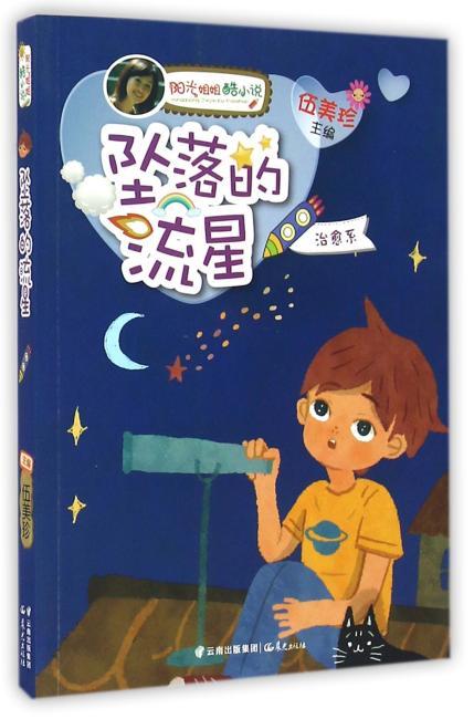 阳光姐姐酷小说——《坠落的流星》