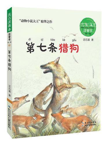 沈石溪画本·注音书系列(第一辑)——第七条猎狗