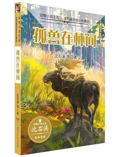 动物小说王国·沈石溪自选中外精品·孤兽在林间