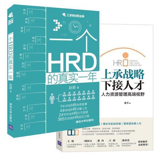 人力资源总监必读 一个HRD真实一年 战略与人才(套装 共2册)