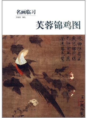 名画临习·芙蓉锦鸡图