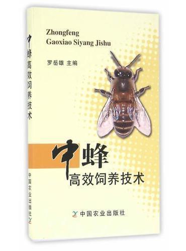 中蜂高效饲养技术