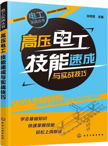 电工实战丛书--高压电工技能速成与实战技巧