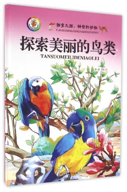 探索美丽的鸟类