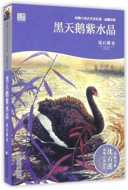 动物小说大王沈石溪·品藏书系:黑天鹅紫水晶