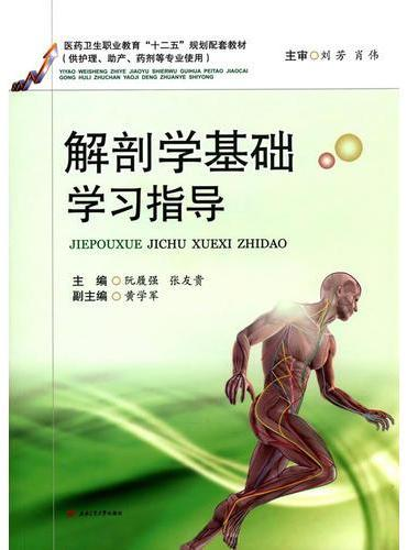 解剖学基础学习指导