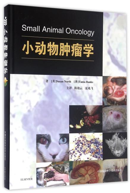 小动物肿瘤学
