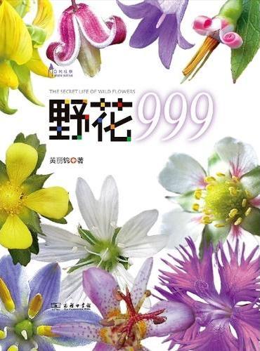 野花999