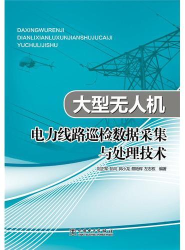 大型无人机电力线路巡检数据采集与处理技术